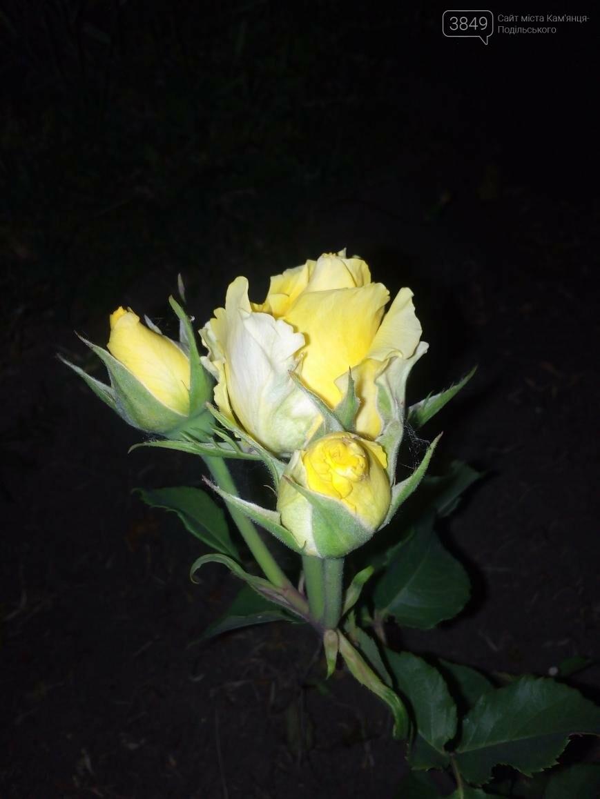 Фокус на нічний Кам'янець, фото-1