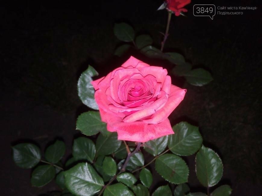 Фокус на нічний Кам'янець, фото-4