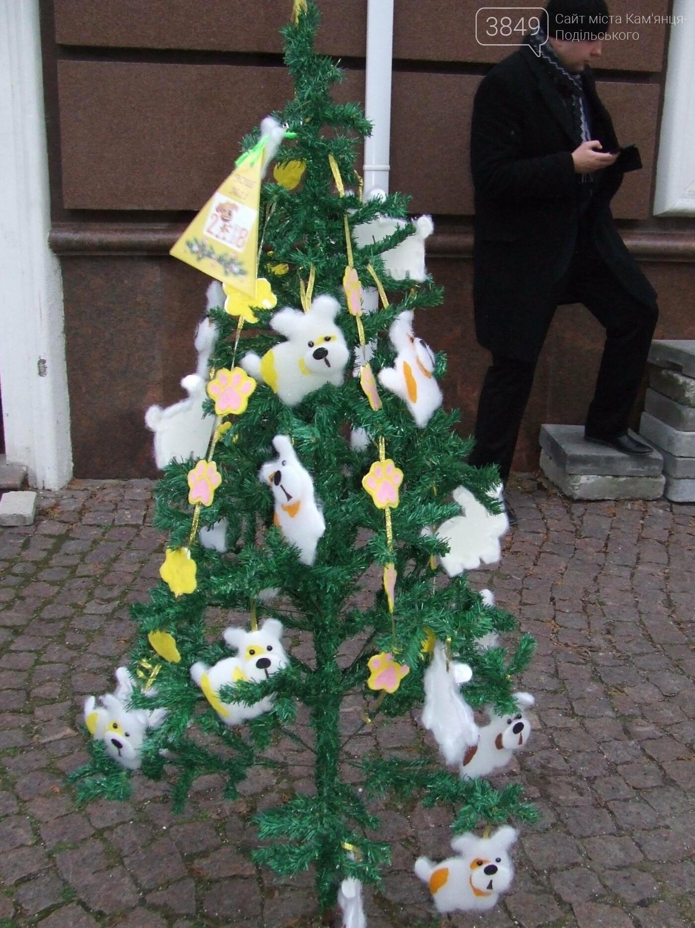 В Кам'янці проводили конкурс на краще оформлення ялинки, фото-7