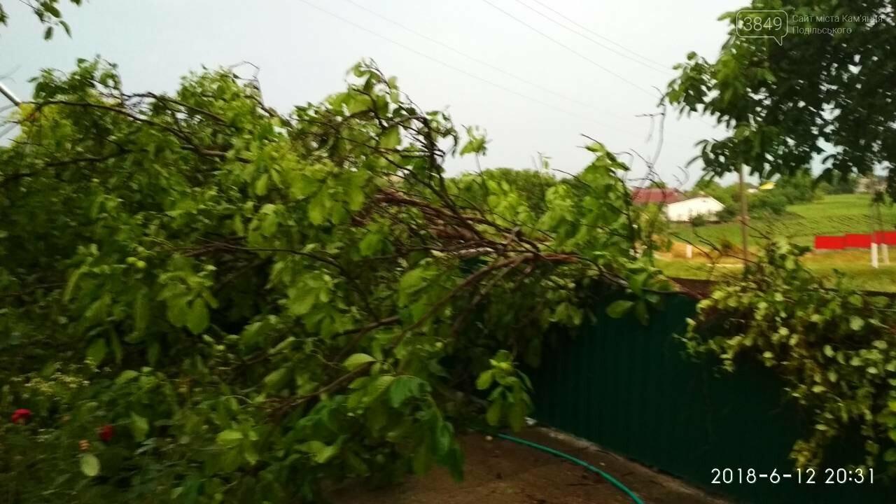 У Кам'янець-Подільському районі знеструмлено 14 населених пунктів, фото-1