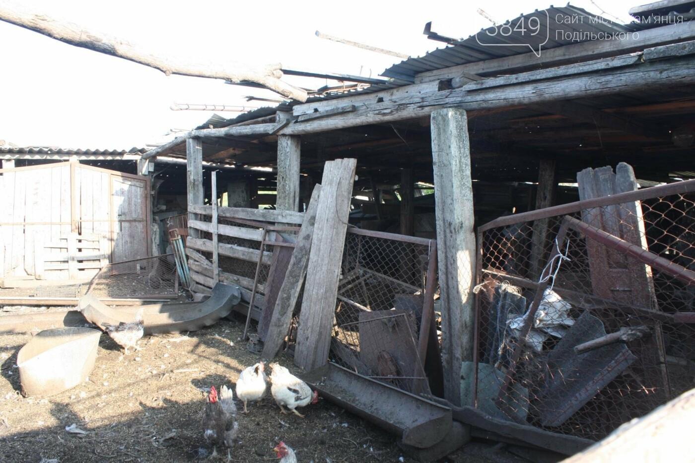 """В Кам'янці відбулось """"народне віче"""" щодо жорстокого поводження з тваринами, фото-21"""