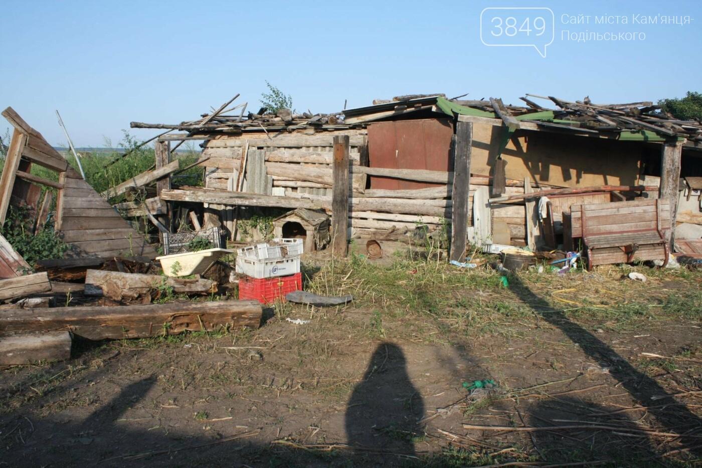 """В Кам'янці відбулось """"народне віче"""" щодо жорстокого поводження з тваринами, фото-23"""