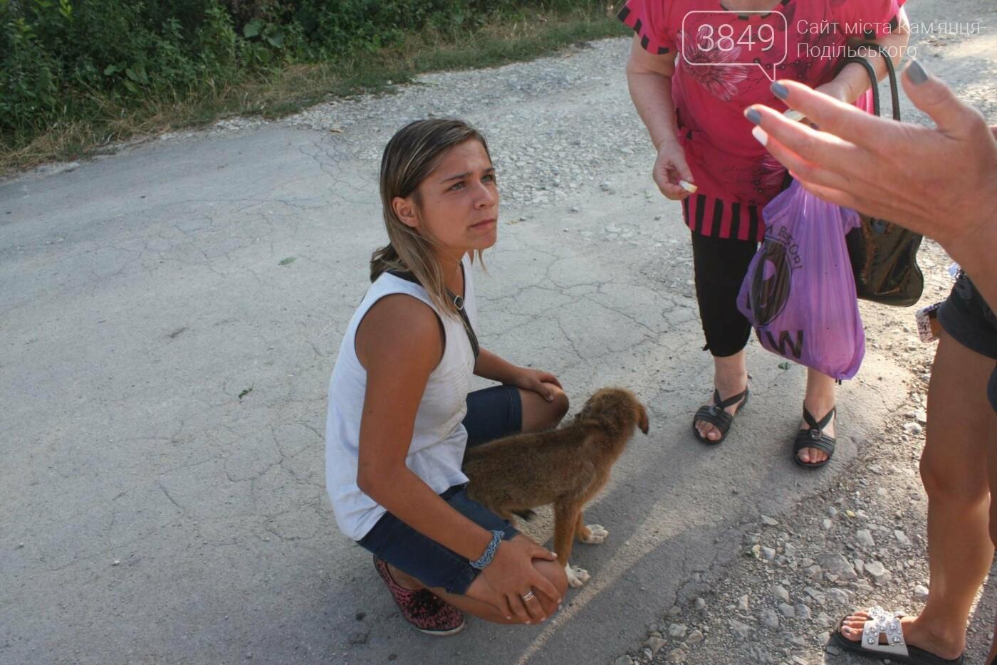 """В Кам'янці відбулось """"народне віче"""" щодо жорстокого поводження з тваринами, фото-9"""