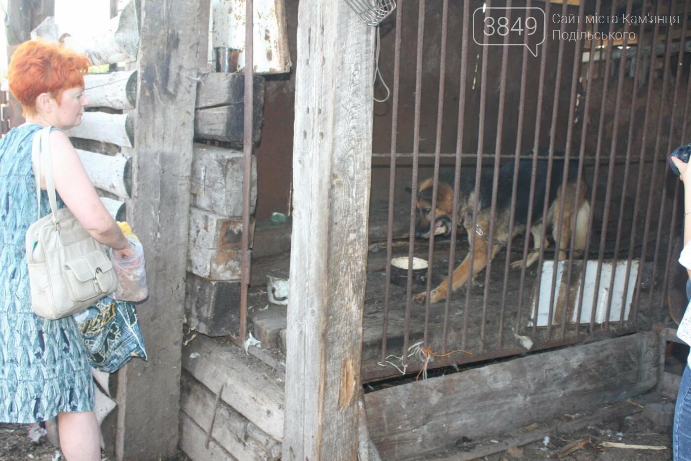 """В Кам'янці відбулось """"народне віче"""" щодо жорстокого поводження з тваринами, фото-10"""