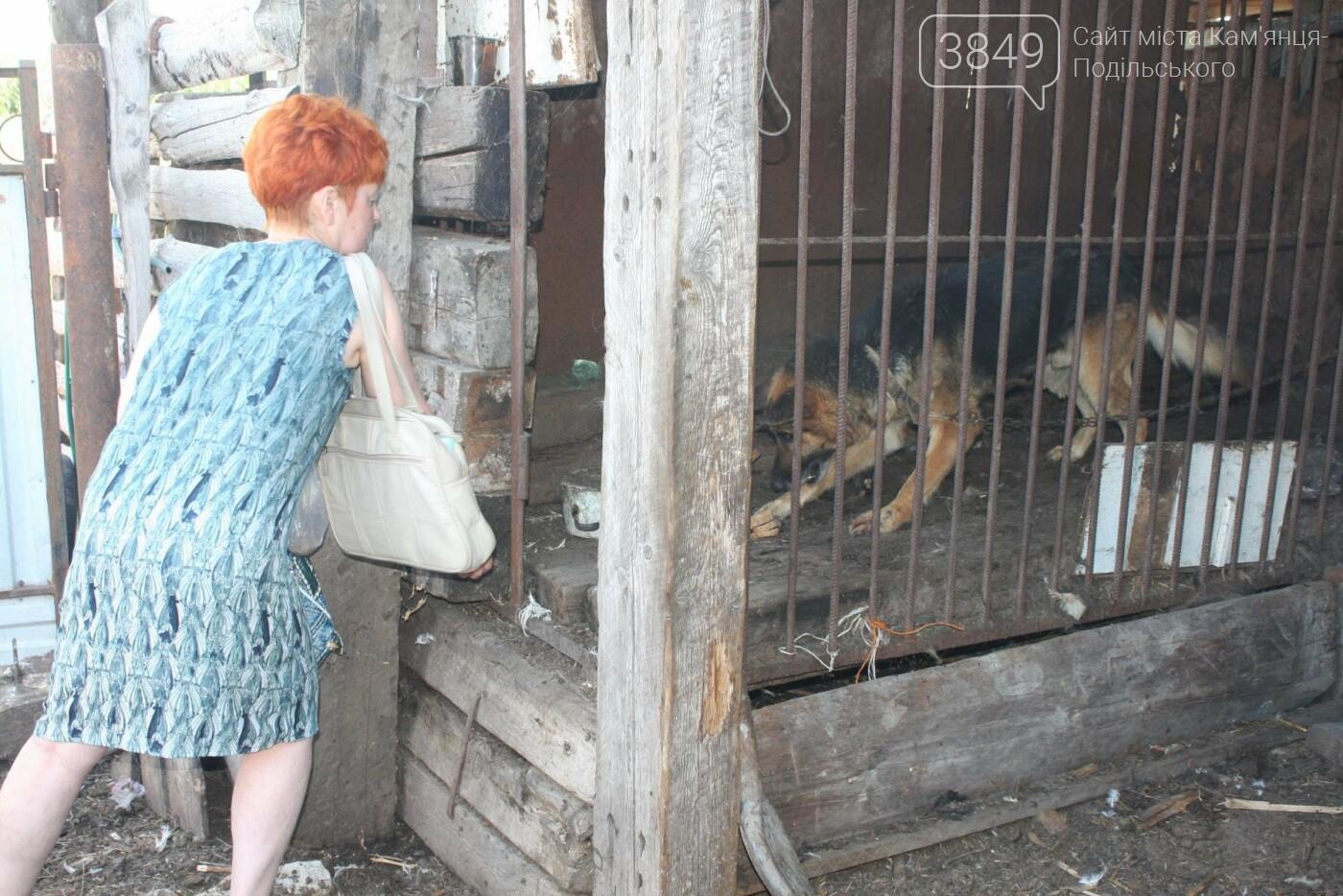 """В Кам'янці відбулось """"народне віче"""" щодо жорстокого поводження з тваринами, фото-11"""