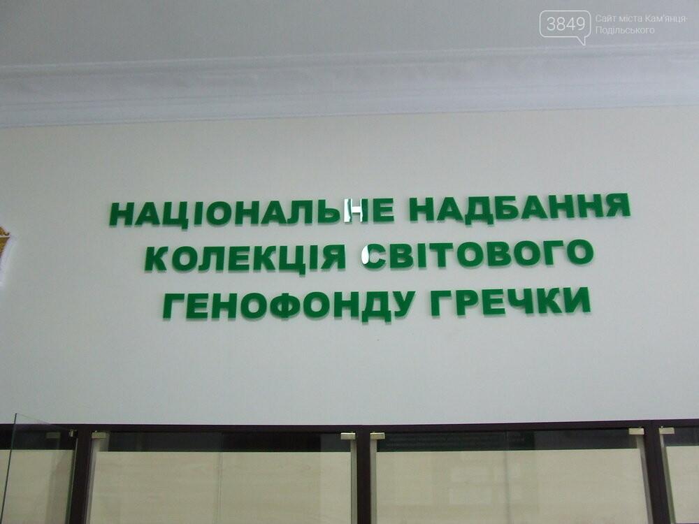 У Кам'янці-Подільському функціонує унікальний інститут гречки, фото-9