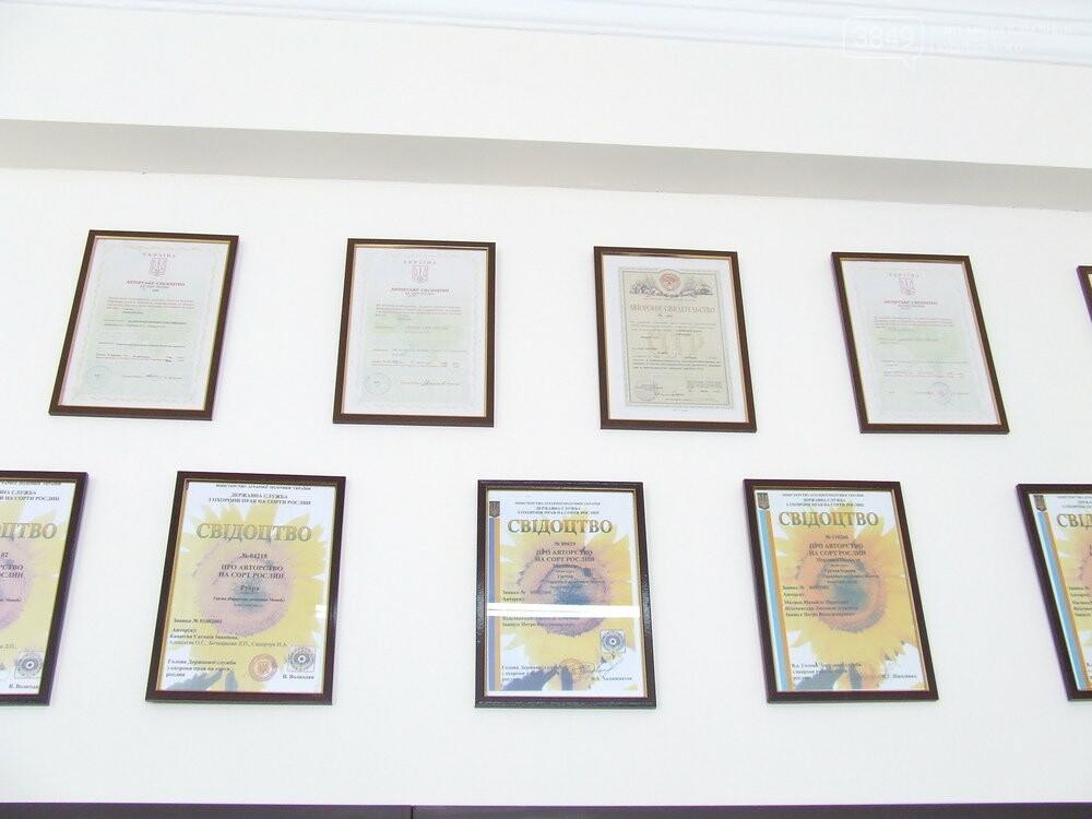 У Кам'янці-Подільському функціонує унікальний інститут гречки, фото-10