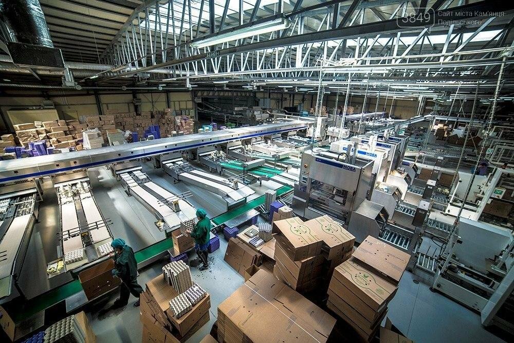 Бахматюк побудував найбільші в Євразії фабрики. НАБУ і прокуратура їх не бачить, фото-1