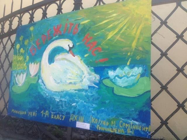 Збережімо лебедят!, фото-5
