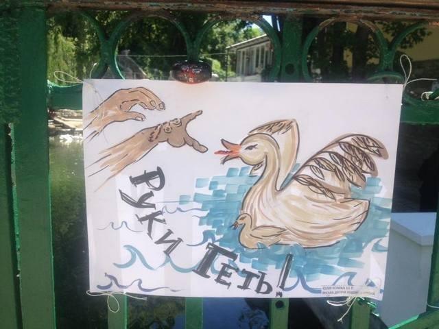 Збережімо лебедят!, фото-2