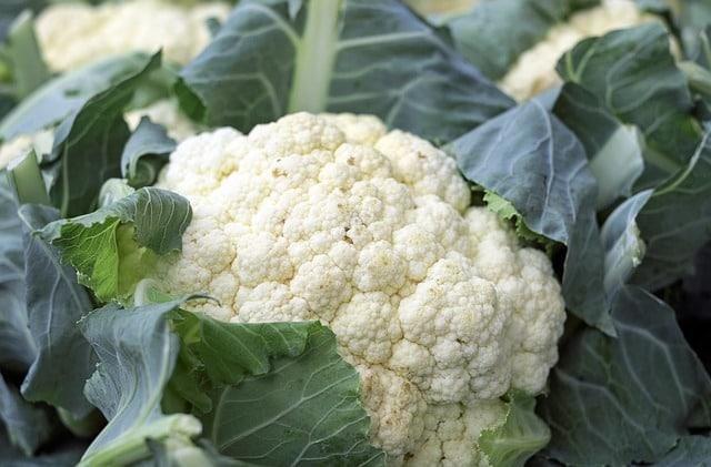 11 порад: заморозка овочів та фруктів, фото-7
