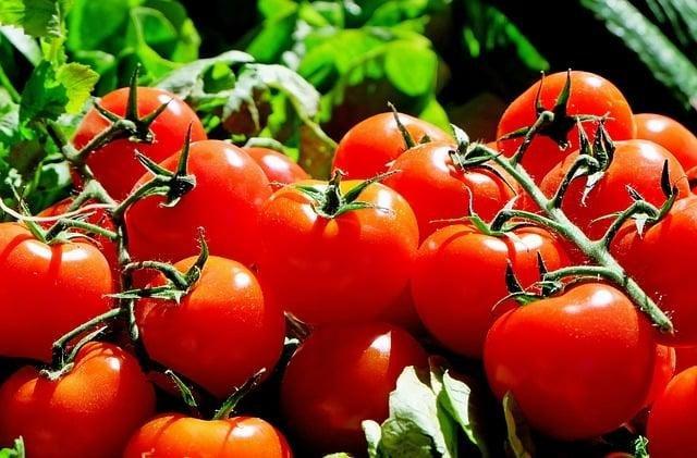 11 порад: заморозка овочів та фруктів, фото-9