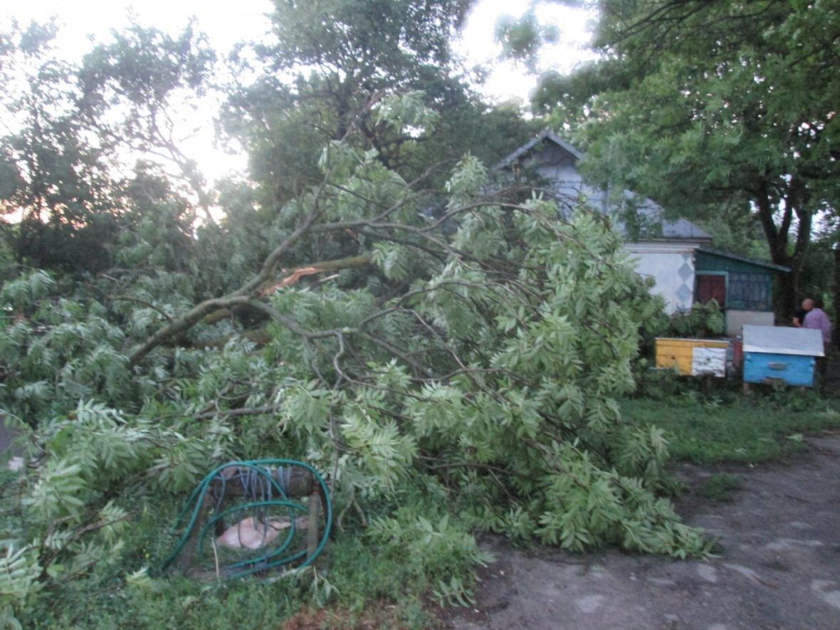Вчорашня злива знеструмила 236 населених пунктів, фото-6