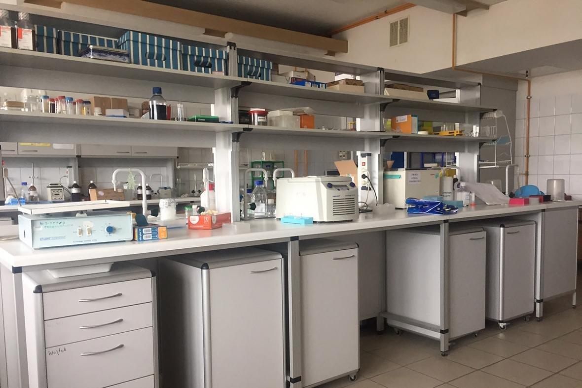 Подільський державний аграрно-технічний університет отримав грант на проведення наукових досліджень, фото-3