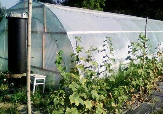 Кам`янчанин облаштував сучасну теплицю для вирощування коноплі у себе вдома, фото-2