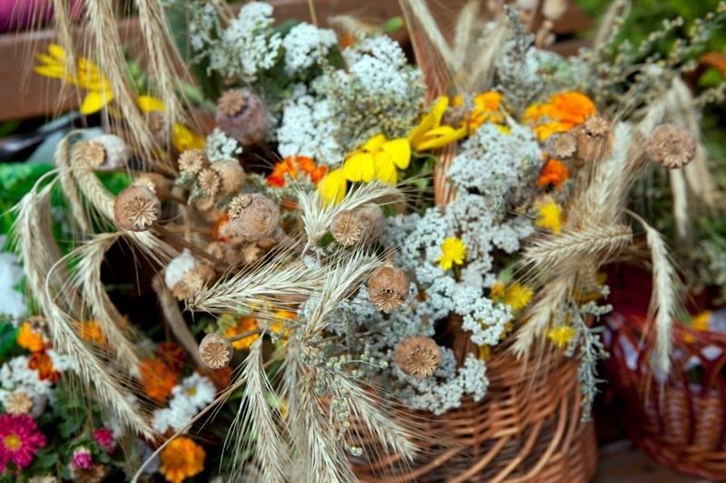 Свято Маковія: історія та традиції, фото-1