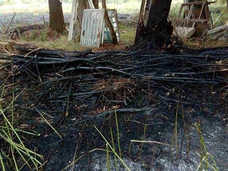 У Кам`янці на приватній території сталося загоряння дров, фото-2