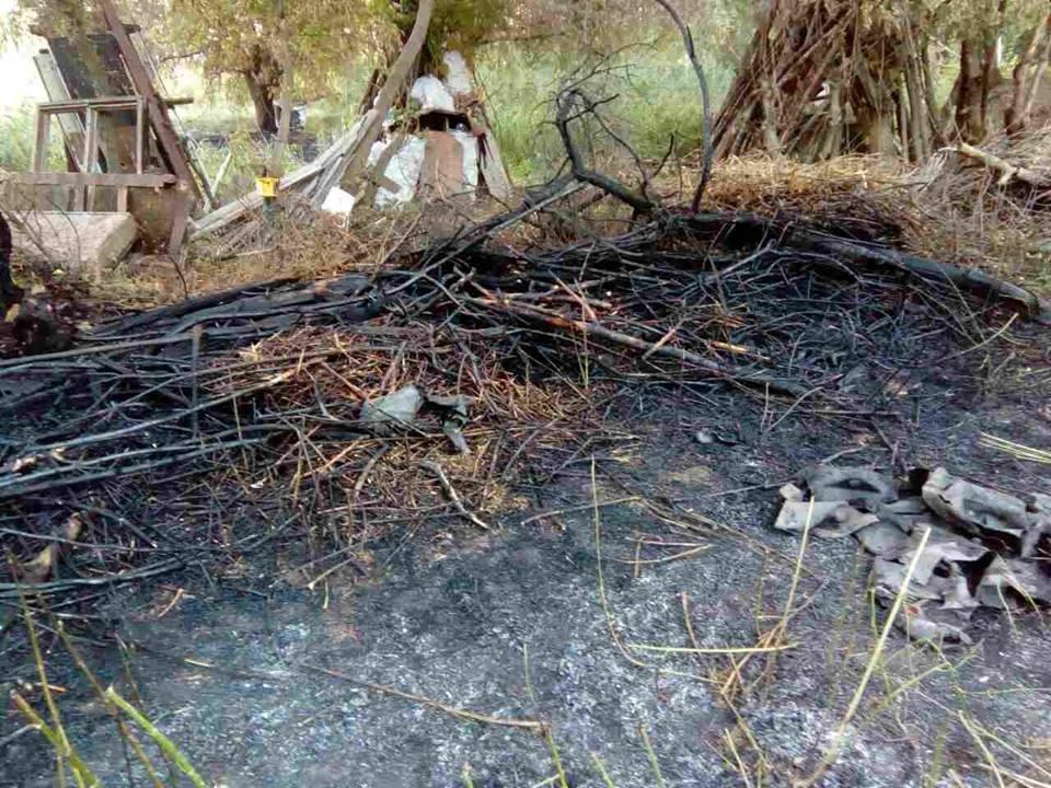 У Кам`янці на приватній території сталося загоряння дров, фото-3