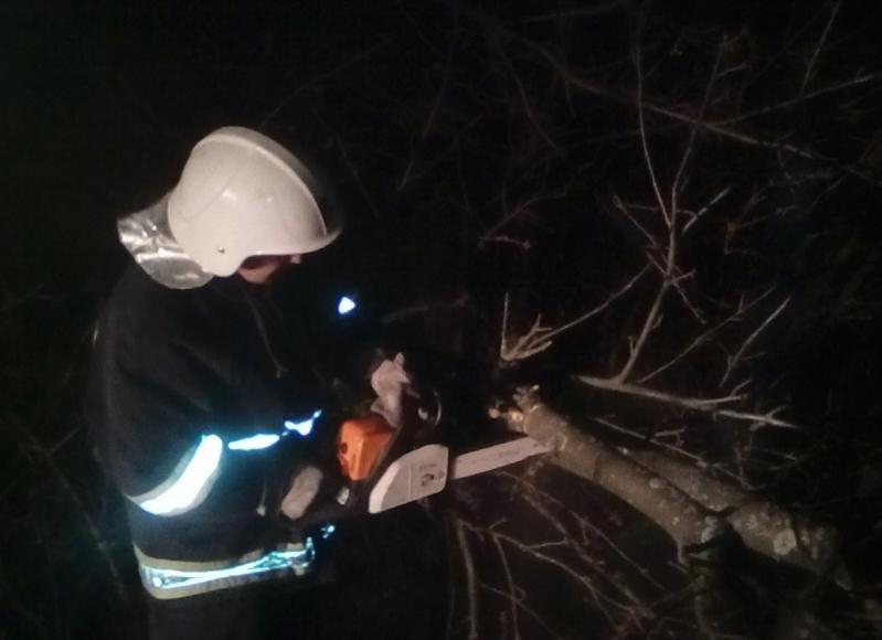 Рятувальники ліквідовують наслідки негоди на Хмельниччині: 51 населений пункт без електроенергії, фото-1