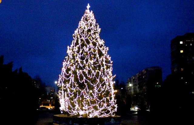 Де в Хмельницькій області найгарніша новорічна ялинка, фото-5