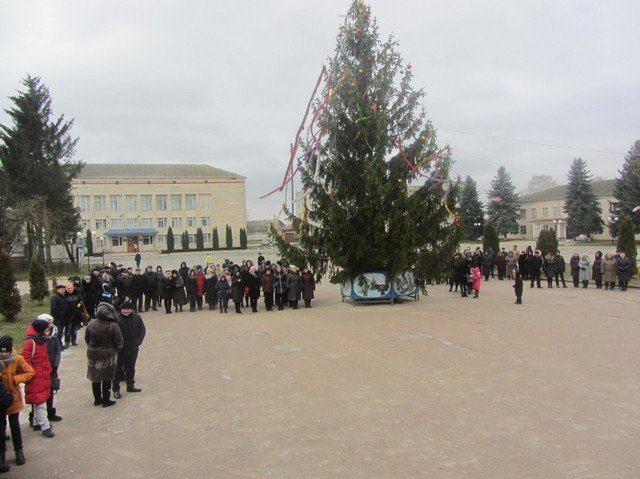 Де в Хмельницькій області найгарніша новорічна ялинка, фото-14