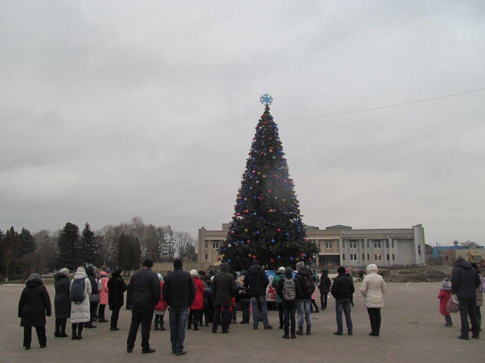 Де в Хмельницькій області найгарніша новорічна ялинка, фото-16