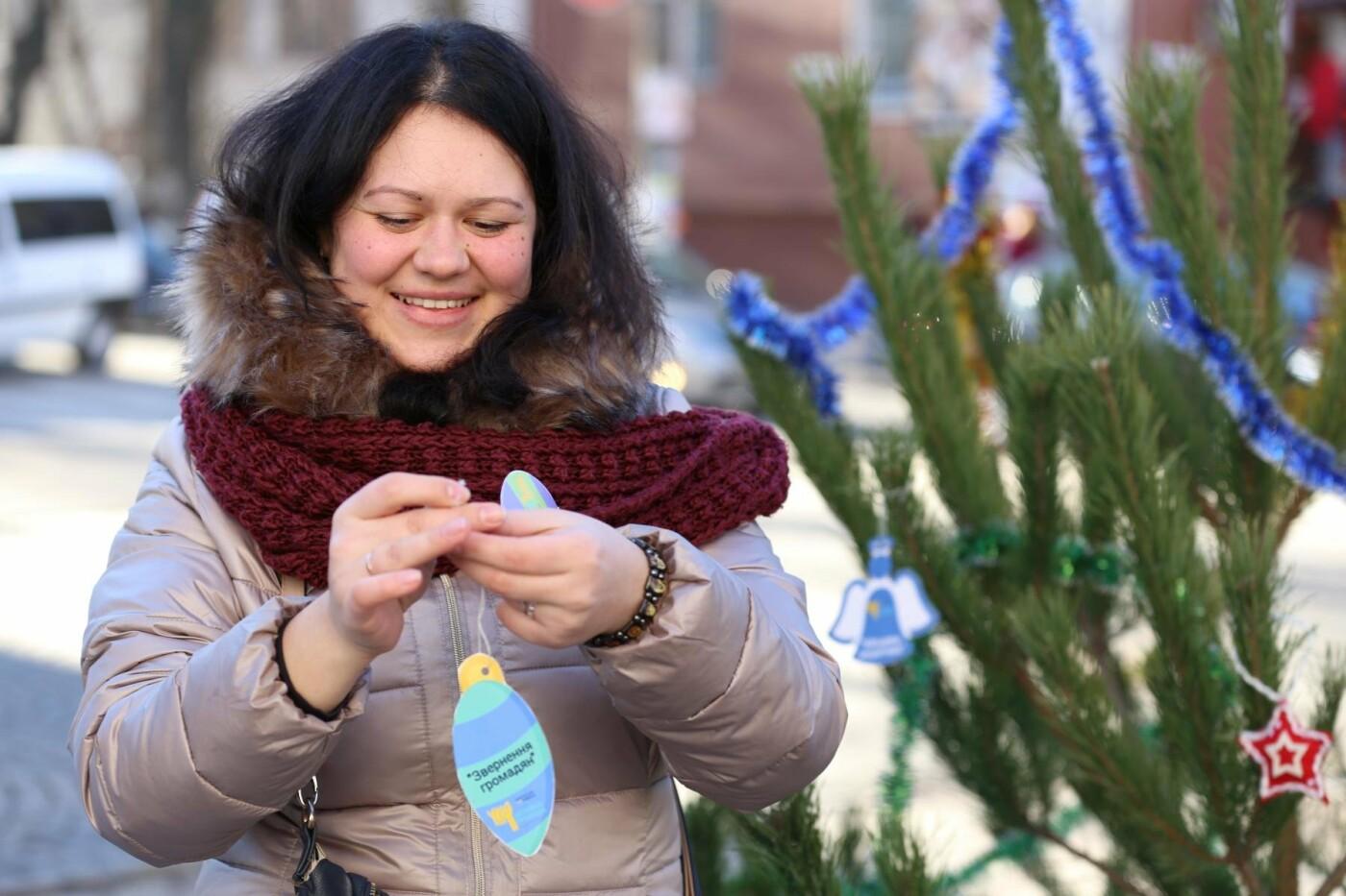 У Кам'янці-Подільському з'явилася «ялинка свідомості», фото-7