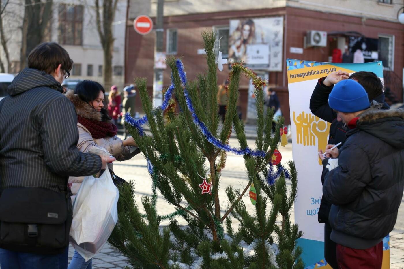 У Кам'янці-Подільському з'явилася «ялинка свідомості», фото-10