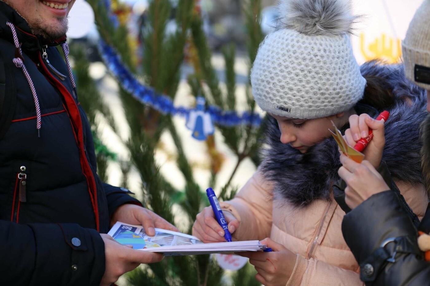 У Кам'янці-Подільському з'явилася «ялинка свідомості», фото-8