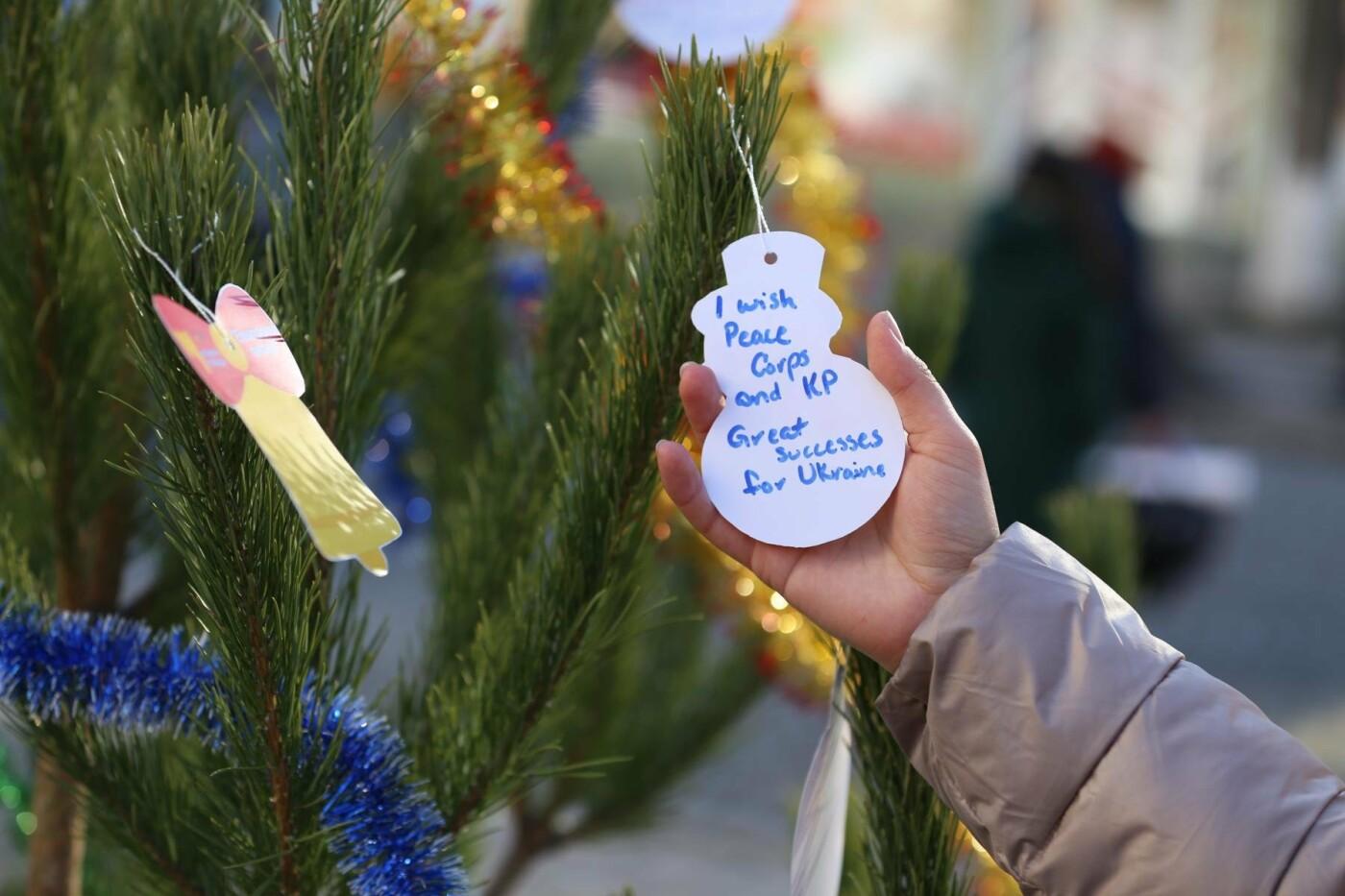 У Кам'янці-Подільському з'явилася «ялинка свідомості», фото-5