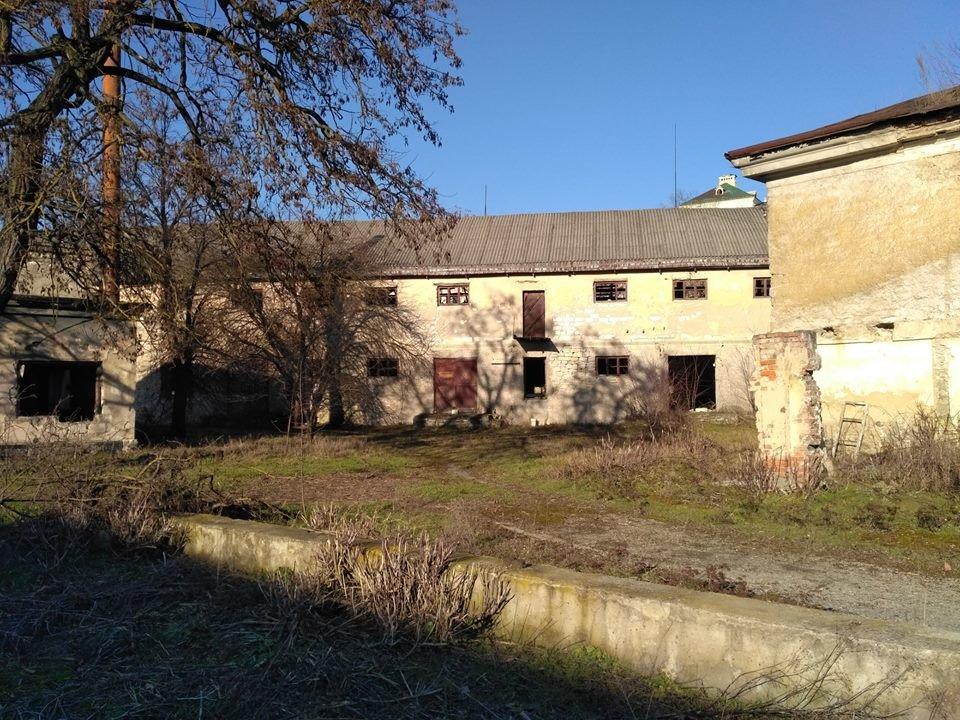 Громадська організація провела моніторинг стану архітектурних пам'яток Старого міста, фото-12