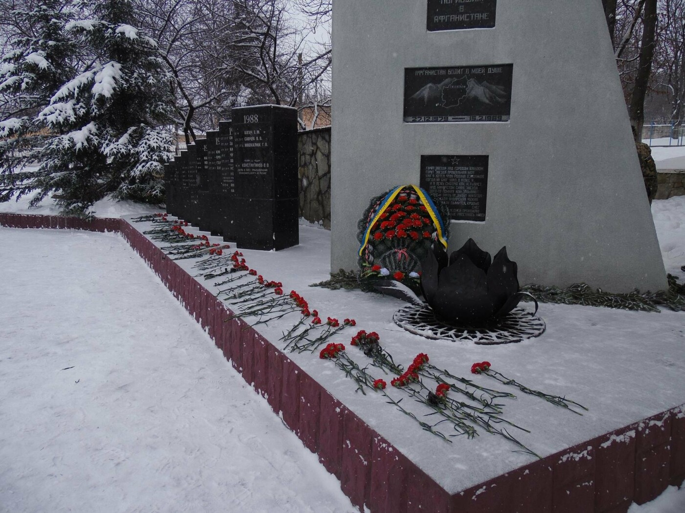 День вшанування учасників бойових дій, фото-4