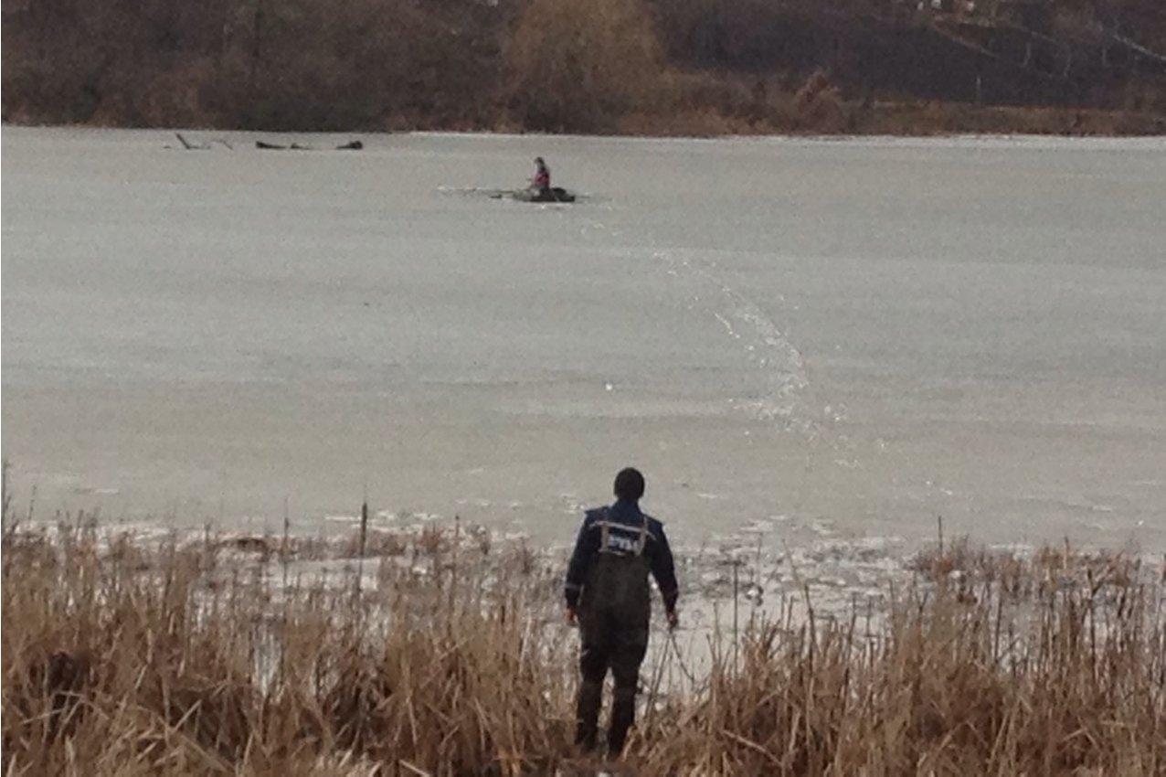 На Хмельниччині врятували собаку, що провалився під лід, фото-1