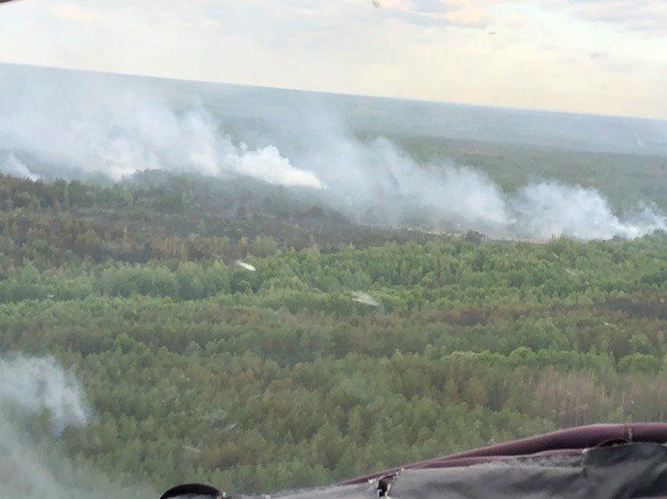 Пожежа в Чорнобилі: рятувальники радять не панікувати , фото-3