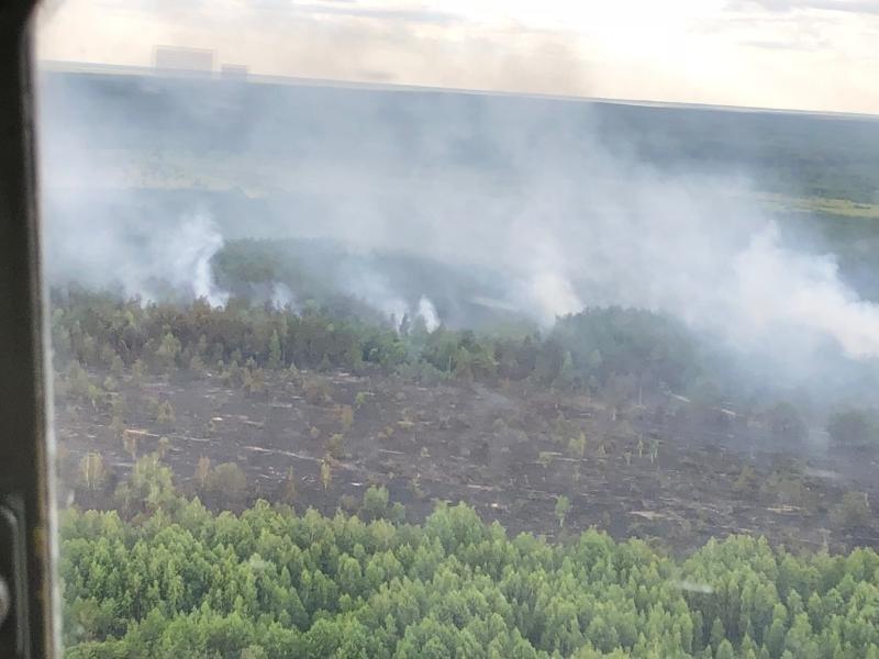 Пожежа в Чорнобилі: рятувальники радять не панікувати , фото-1