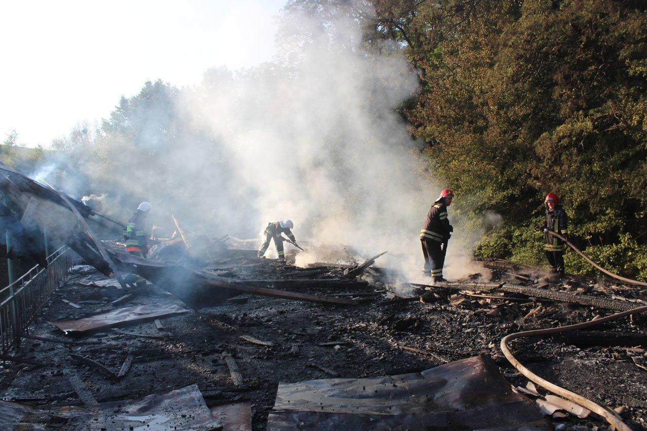 Кам'янецькі вогнеборці врятували ліс від пожежі, фото-1