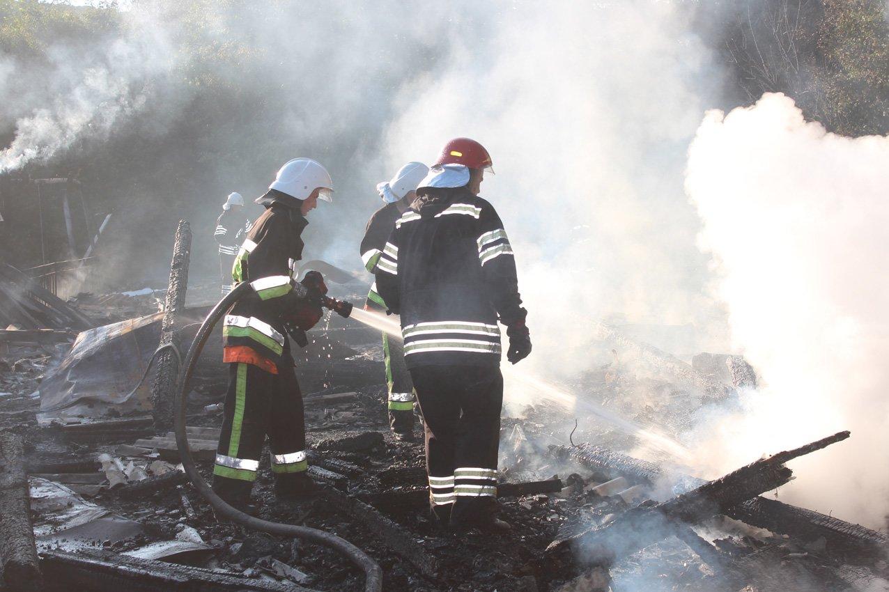 Кам'янецькі вогнеборці врятували ліс від пожежі, фото-3