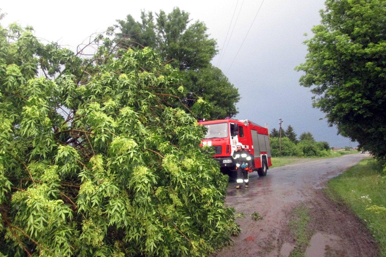 Аварійні бригади відновлюють електропостачання в 61 населеному пункті Хмельниччини, фото-1