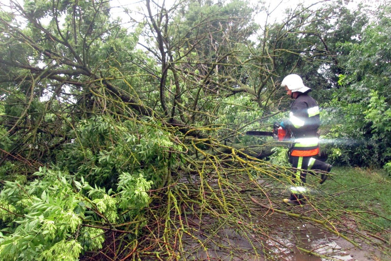 Аварійні бригади відновлюють електропостачання в 61 населеному пункті Хмельниччини, фото-2