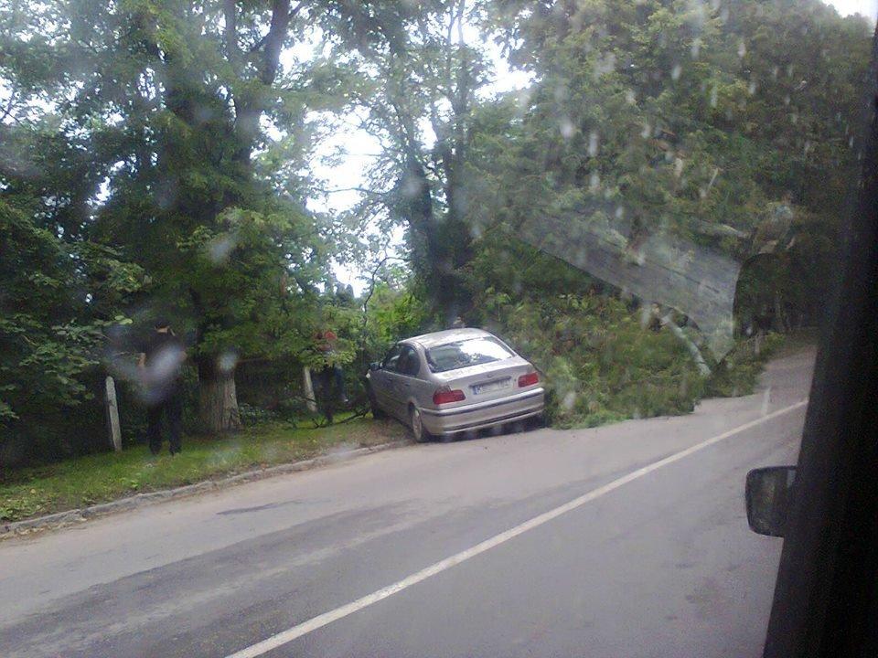 У Кам'янці сталось дві ДТП: є постраждалі, фото-4