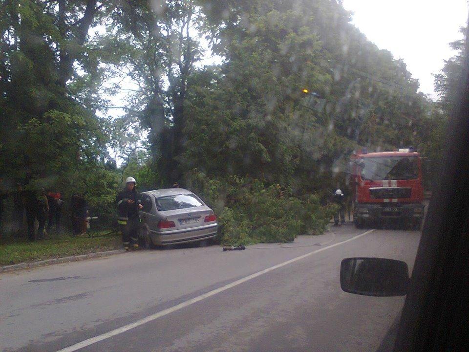 У Кам'янці сталось дві ДТП: є постраждалі, фото-5