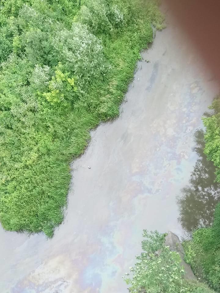 У річці Смотрич масово подохла риба через невідому паливну речовину, фото-1