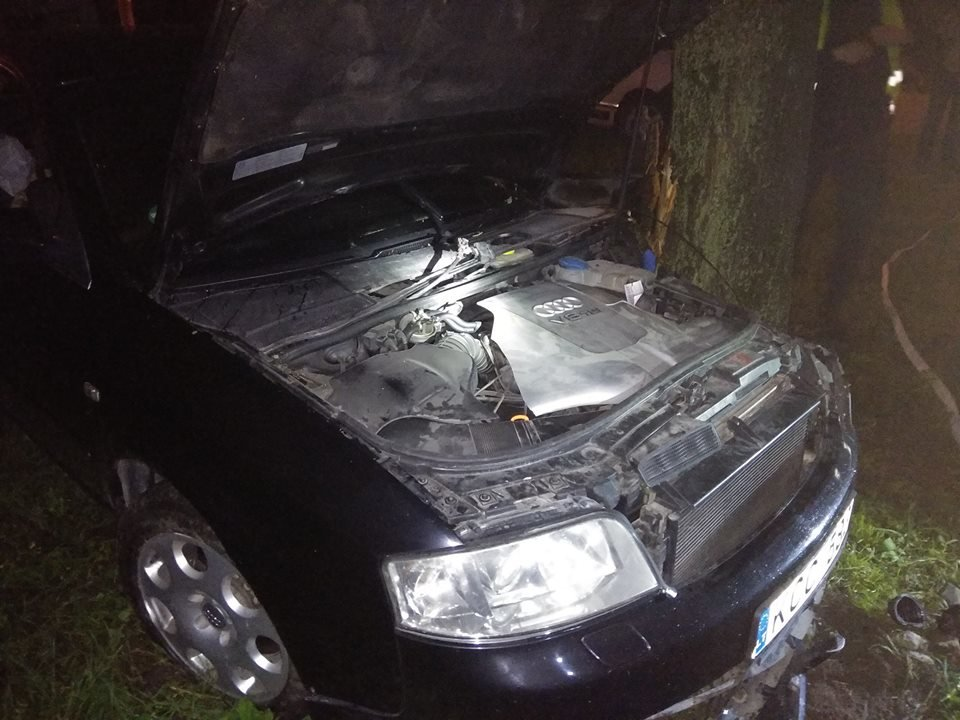 Врізався в дерево і втік з місця аварії: на перехресті Північної та Лесі Українки сталася ДТП, фото-1