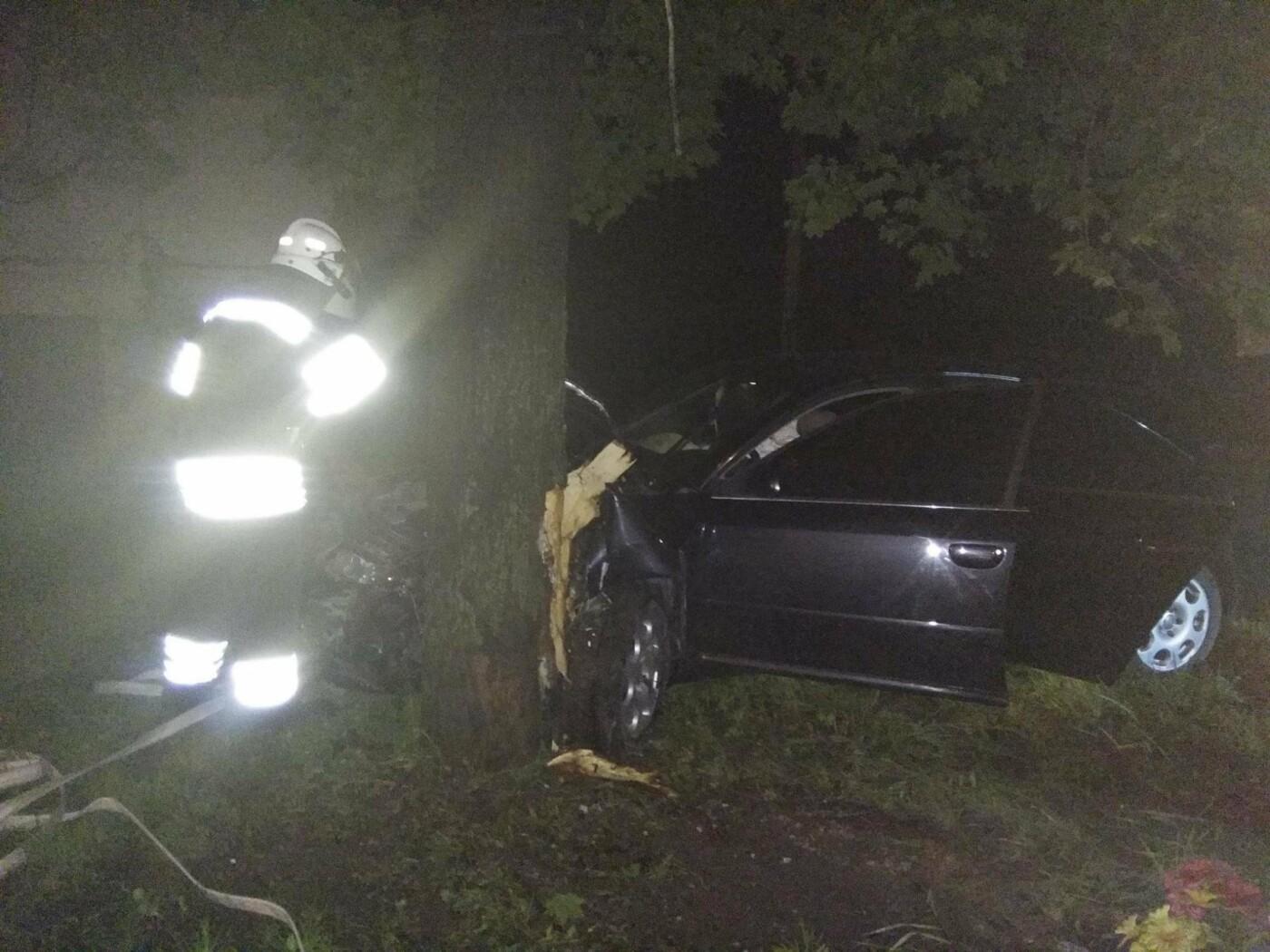 Врізався в дерево і втік з місця аварії: на перехресті Північної та Лесі Українки сталася ДТП, фото-3