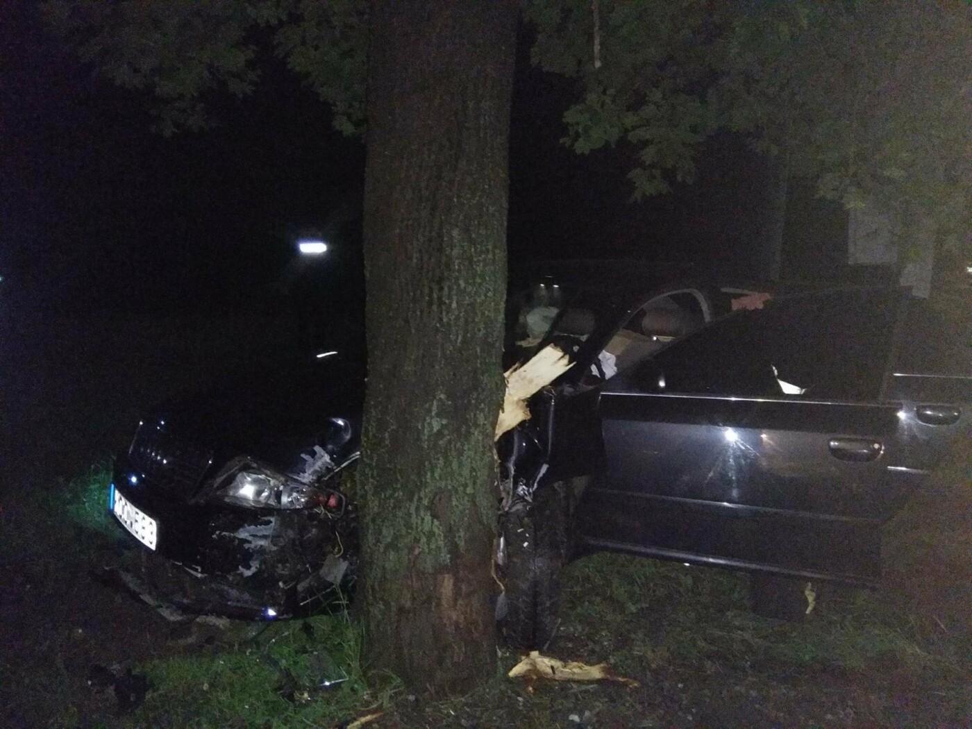 Врізався в дерево і втік з місця аварії: на перехресті Північної та Лесі Українки сталася ДТП, фото-2