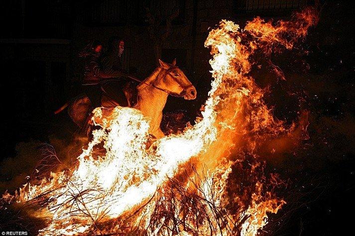 Традиції, обряди та заборони на Івана Купала, фото-2