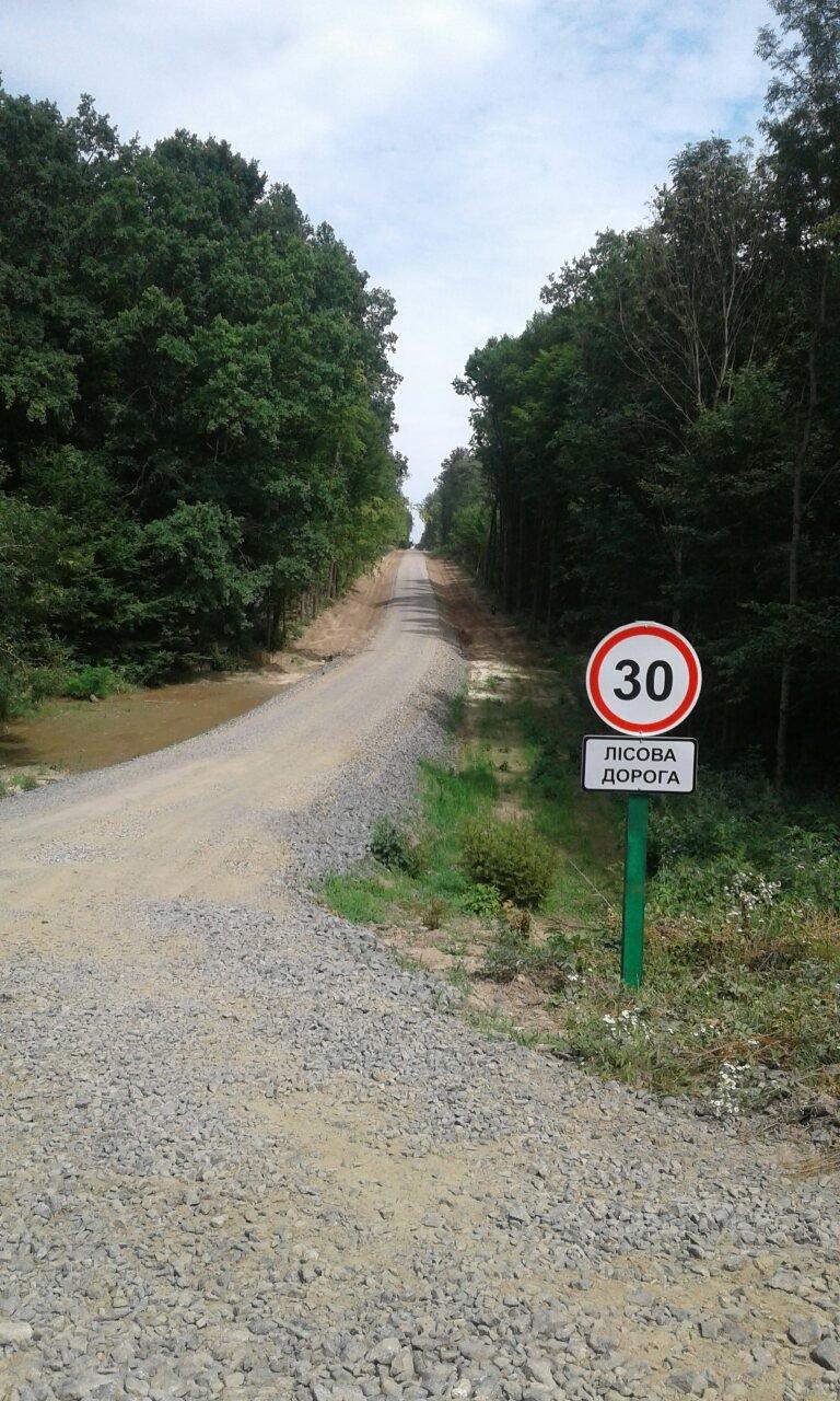 На Хмельниччині ремонтують лісові дороги, фото-3