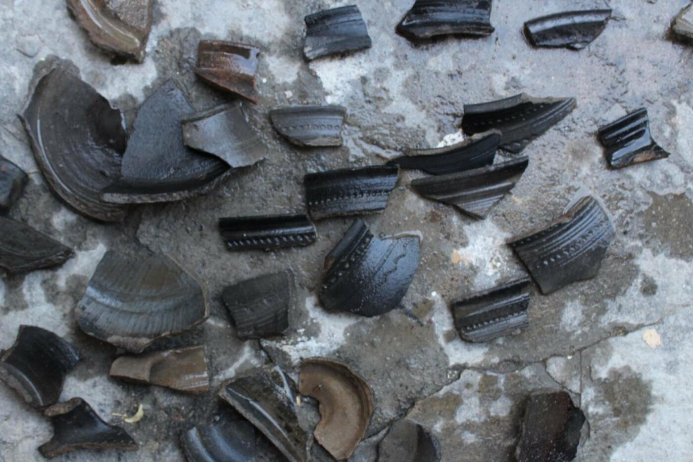 Археологи прозвітували про результати експедиції по вулиці Довгій, фото-3