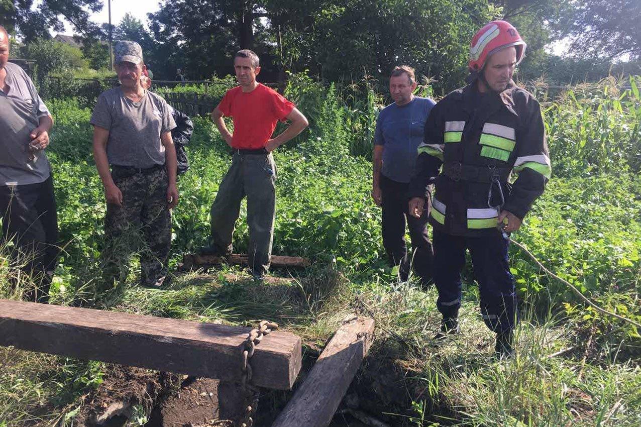 На Дунаєвеччині рятувальники дістали з криниці коня, фото-1