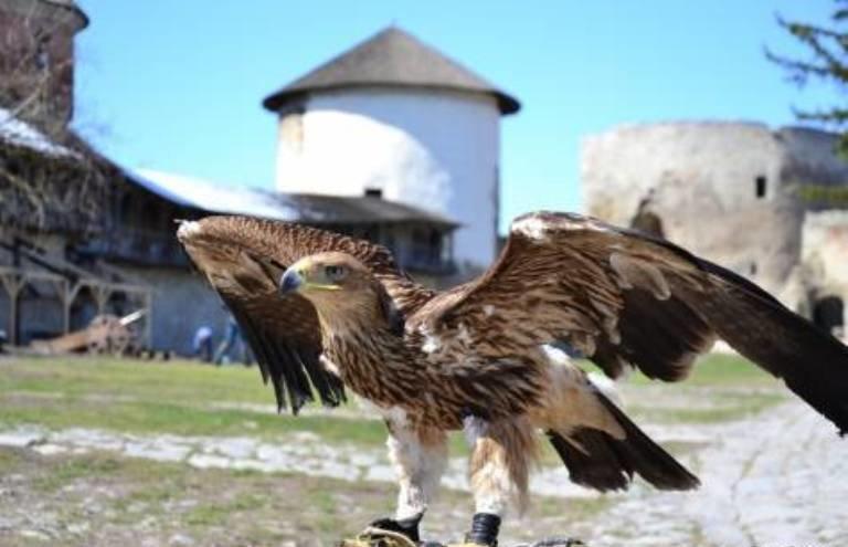 Легендарна фортеця королівського міста: історія фортеці Кам'янця, фото-1